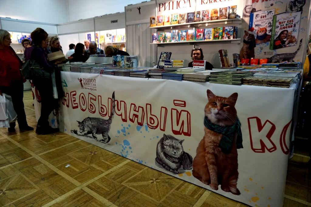 Нонфикшн кот